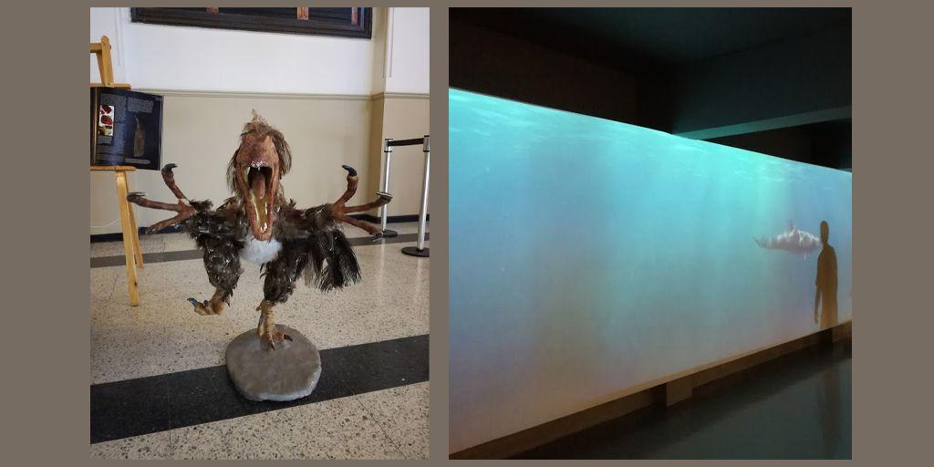 Museo de Historia Natural - Viernes 9 de marzo 2018